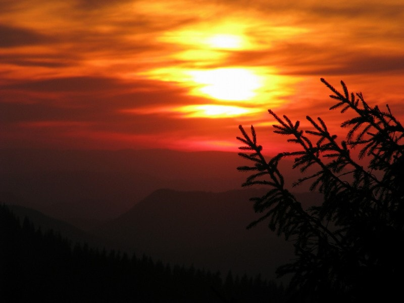 Закат на полонине Лисья